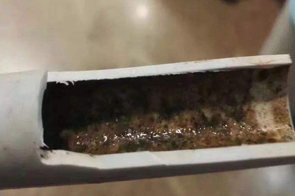 水管里的青苔怎么清除?